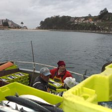 La cofradía de pescadores de Ribadesella dona cinco cajas de xarda a la residencia San José de la Montaña