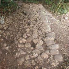 Ciudadanos (Cs) reclama el apoyo económico del Principado a las excavaciones arqueológicas del castro de Antrialgo