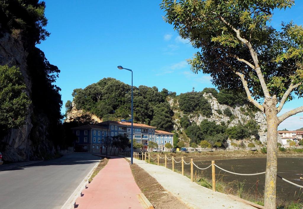 Pueblu denuncia la tala de árboles en la avenida de Tito Bustillo de Ribadesella