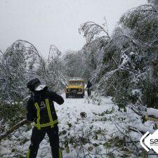 La nieve de las últimas horas deja doscientas incidencias en las carreteras del oriente de Asturias