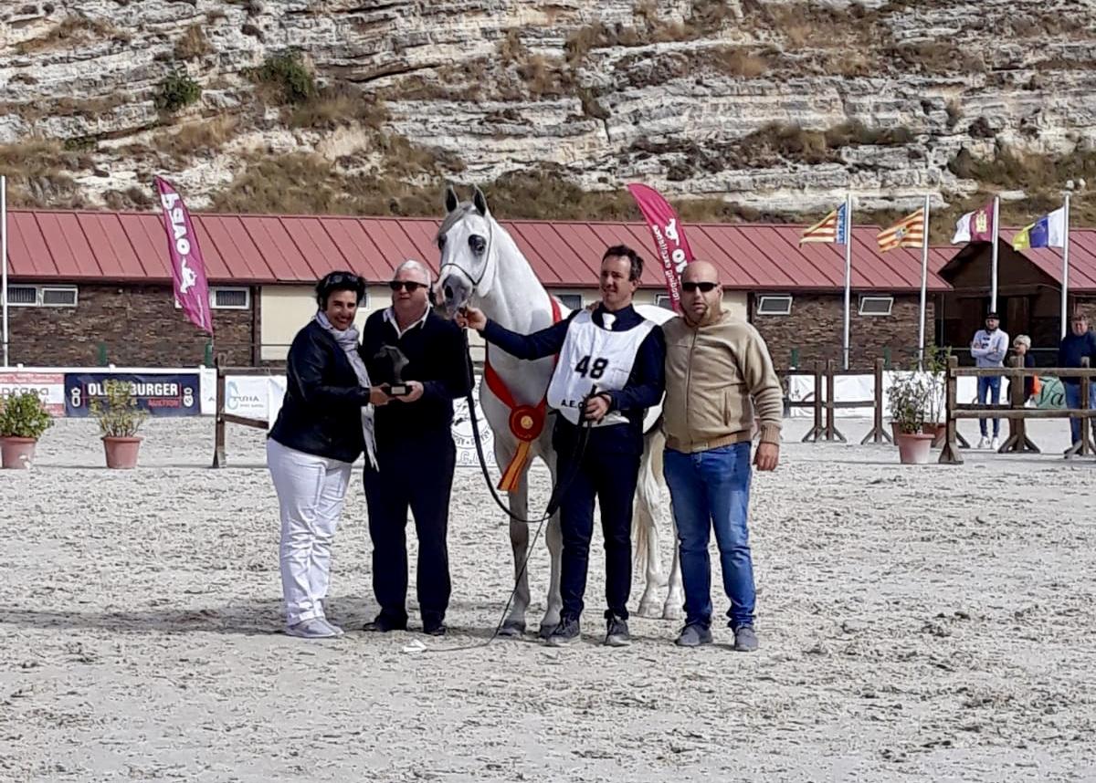 La yeguada de Jacinto Vela logra cinco premios en el Campeonato Nacional de Pura Raza Árabe