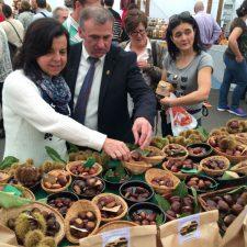 El alcalde de Parres pide que se respeten los actos del Certamen de la Castaña durante la concentración ganadera del domingo