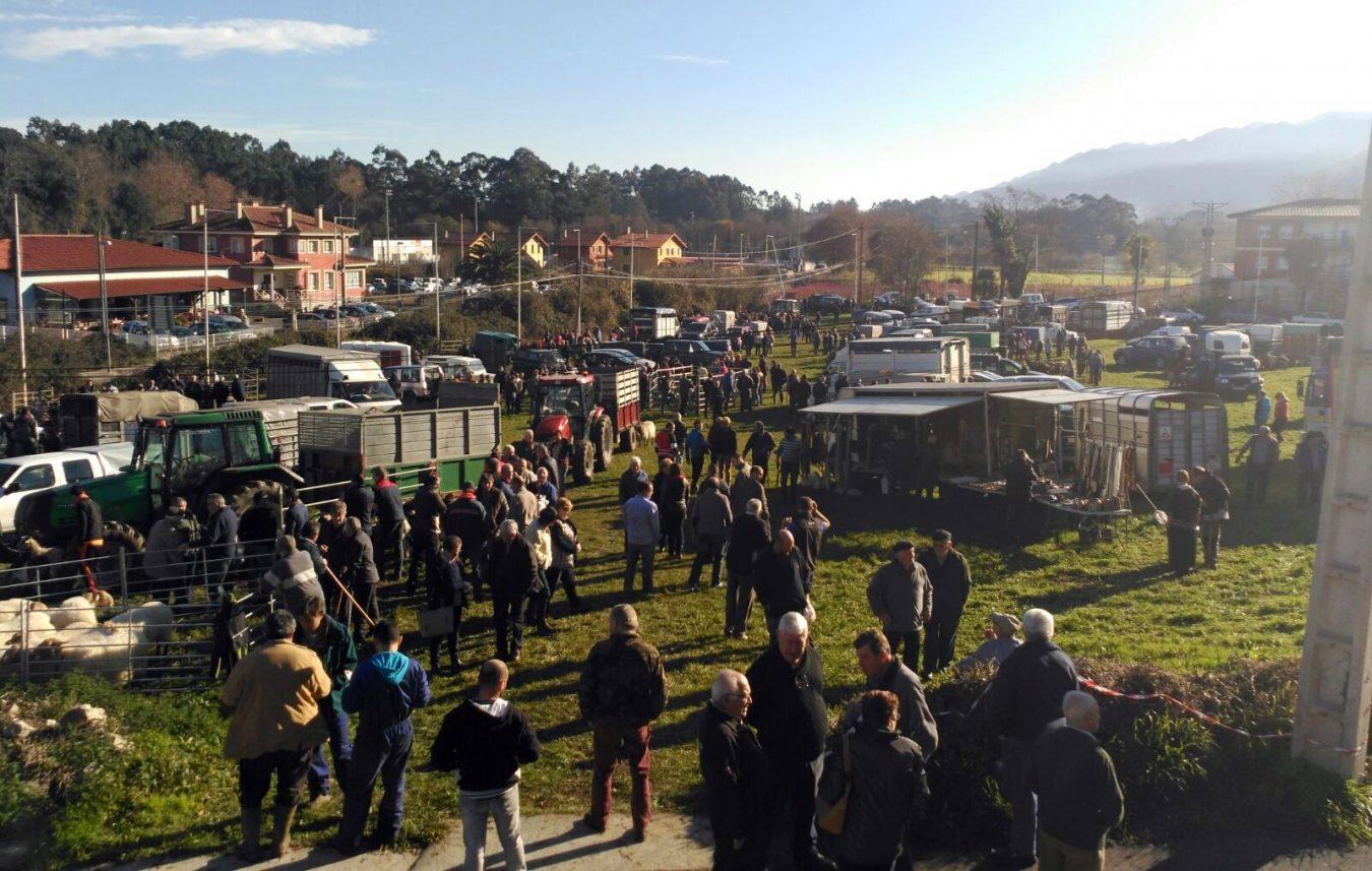 Posada acoge el jueves la tradicional Feria de Santa Lucía