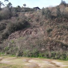 Foro Colunga reclama la reparación urgente del argayu existente en la carretera AS-257