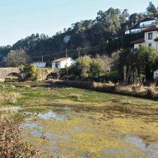 La Confederación anuncia el inicio de la limpieza de cauces en los ríos San Pedro y Acebu de Ribadesella
