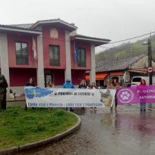 El Grupo Lobo Asturias denuncia la muerte de un ejemplar en Onís en plena oleada de incendios