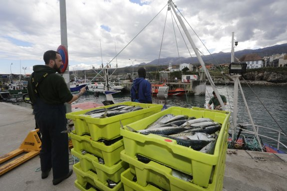 Foro Llanes acusa al PSOE de ningunear a los pescadores asturianos