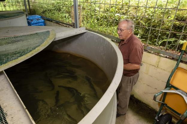 El Principado cede su vivero de peces de Piloña a la Sociedad de Pescadores El Esmerillón
