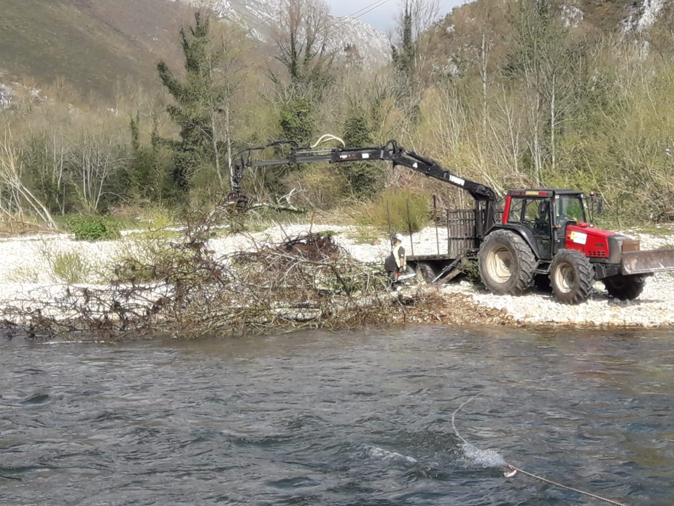 La Confederación retira árboles, troncos y ramajes en el tramo Arriondas-Ribadesella del río Sella