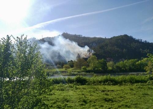 Extinguido un incendio forestal en Cueves del Agua a escasos 50 m de viviendas habitadas