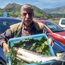Manolo Llano pesca un salmón en La Uña del Sella y sacan el cupo en el Monejo del Cares