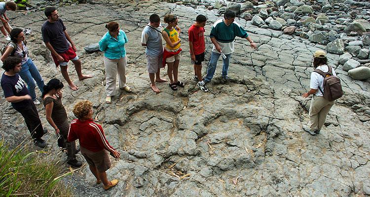 Las huellas de saurópodo de La Griega cumplen 50 años y el MUJA lo celebra con diferentes actividades en el mes de junio