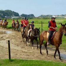 Cruz Roja Ribadesella finaliza a caballo por La Mediana el curso de Apoyo Escolar