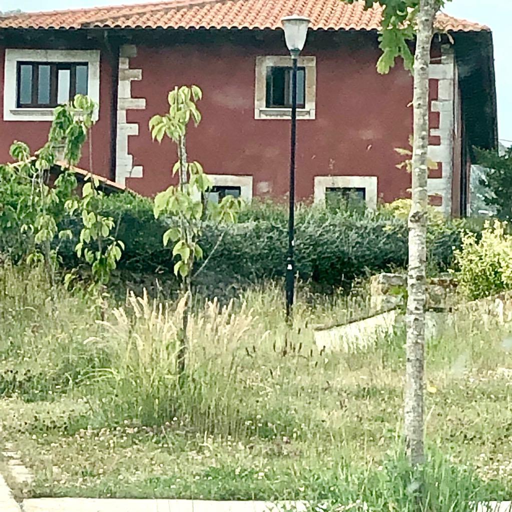 Según el Ayuntamiento de Ribadesella los desbroces llegarán a Linares en breves días