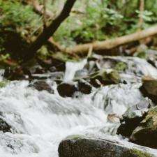 La Asociación Roblón de Coya convoca una limpieza del río Piloña para este viernes 26 de julio