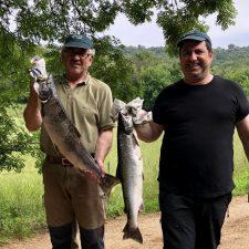 Los ribereños del Sella piden más días para pescar con cebo natural y menos cupos