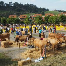 40 ganaderías participarán el próximo domingo en el 97º Concurso-Exposición Playa de Ribadesella