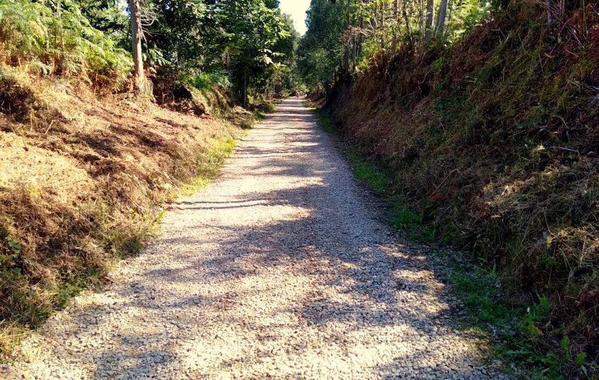 Llanes destina mas de 16.000 euros al desbroce de cien kilómetros de caminos rurales