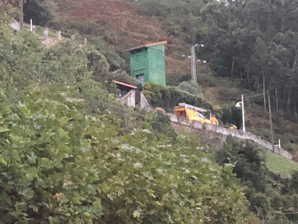 Los Bomberos eliminan un nido de avispa asiática ubicado junto a una vivienda en el camino de Guía, Ribadesella