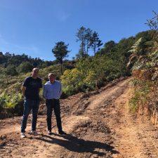 105.000€ para repoblar con pino y castaño el monte La Toya de Parres