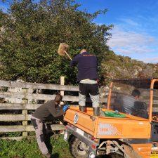 Nueva sextaferia de ganaderos en Onís para reparar el potreru del Llagu, en Cortegueros