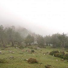 Localizadas dos mujeres desorientadas en la Sierra del Sueve