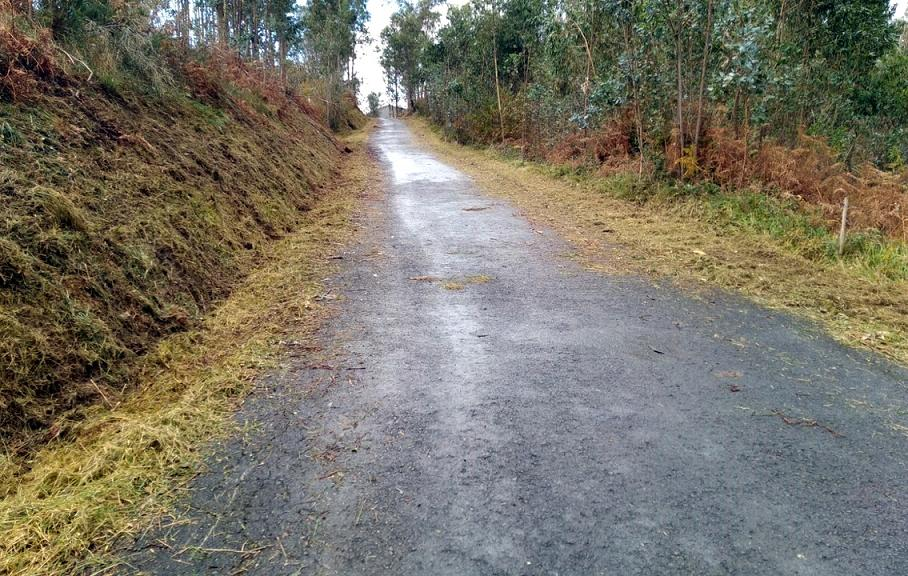 Llanes alcanza los 80 km de caminos desbrozados en menos de tres meses