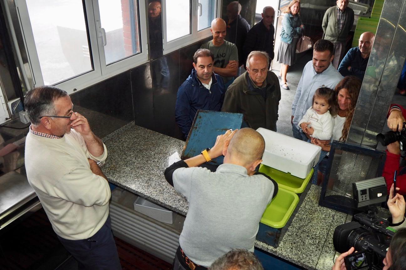 La rula de Ribadesella subastó 403 kilos de angula en noviembre, tres veces mas que el año pasado