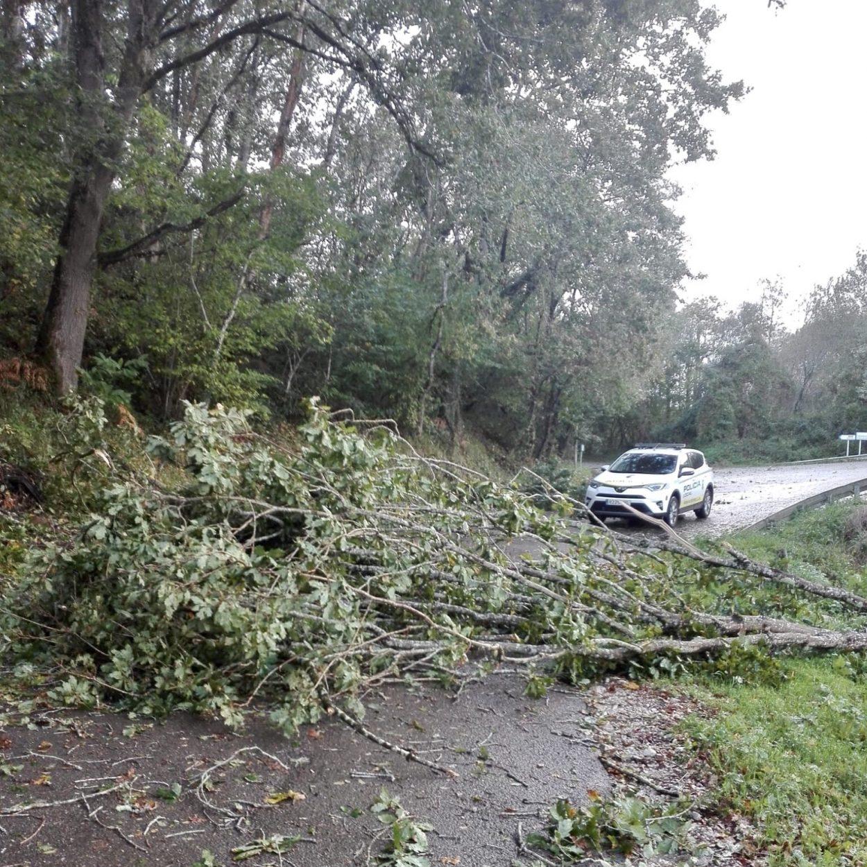 Desactivada la alerta por fuertes vientos después de 506 incidencias en toda Asturias