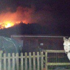 Un incendio forestal quema el monte Torcenal en el concejo de Onís