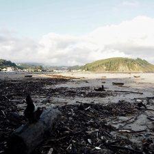 Costas autoriza el acceso de vehículos particulares a la playa de Ribadesella para la saca de madera