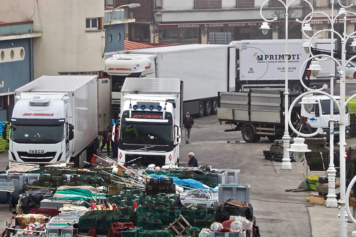 La cofradía de Ribadesella subasta 57.000 kilos de xarda en el primer mes de confinamiento