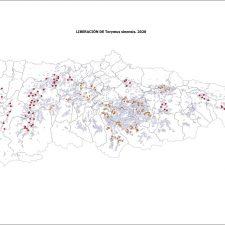 El Principado suelta un insecto en cinco concejos de la comarca para acabar con la avispilla del castaño