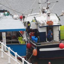 Ciudadanos presenta una batería de medidas urgentes para rescatar al sector pesquero asturiano
