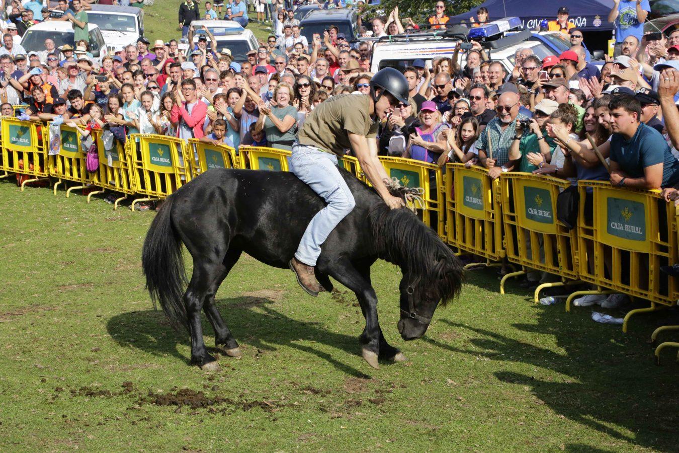 La Fiesta del Asturcón también se cae del calendario festivo estival asturiano