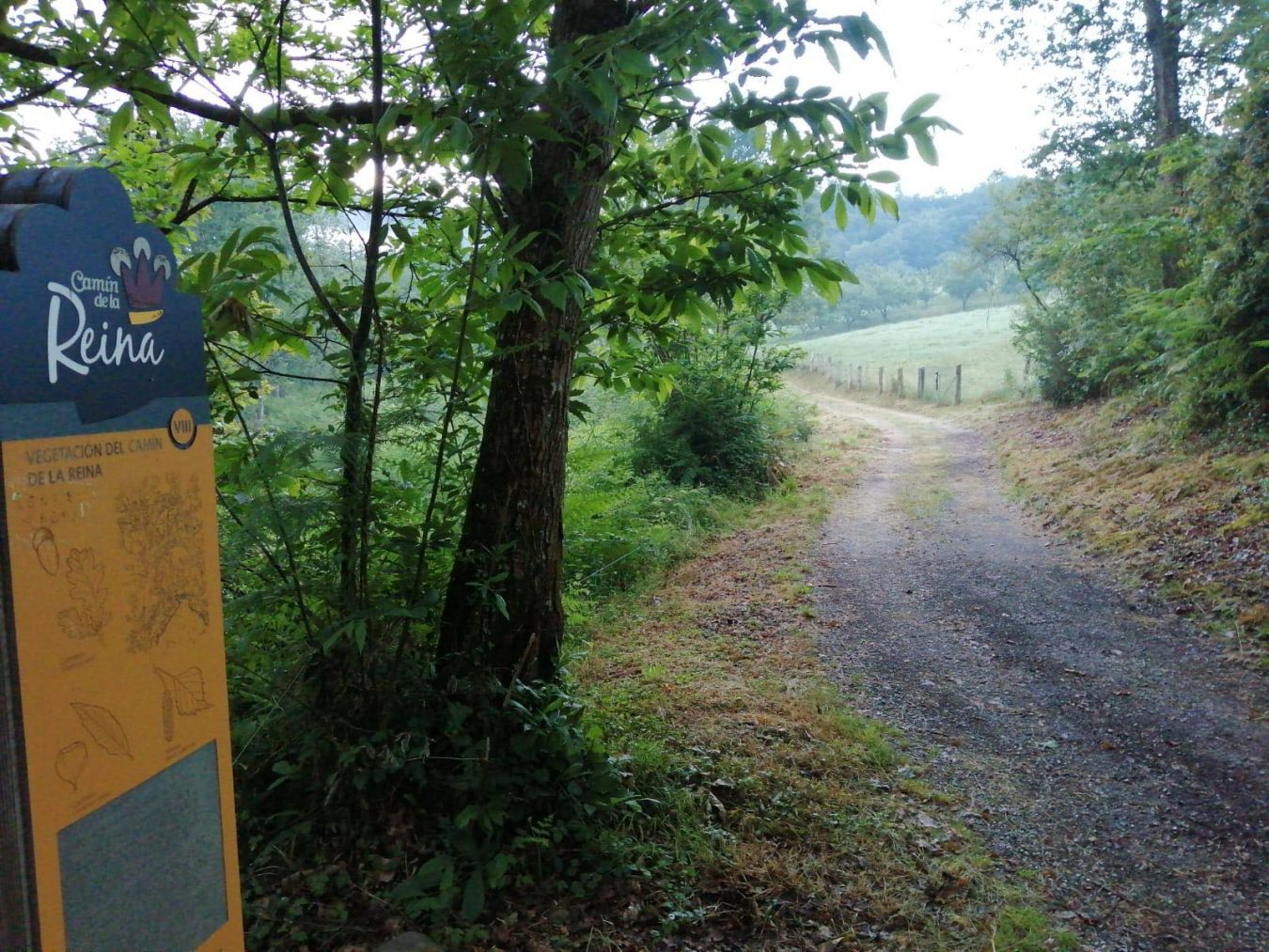 El Ayuntamiento de Parres inicia la limpieza de sus rutas de senderismo y espacios naturales