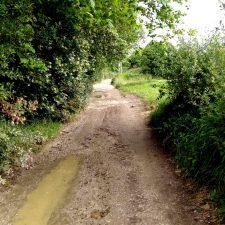 El Ayuntamiento de Llanes acondicionará un tramo del Camino de Santiago entre Poo y Celorio