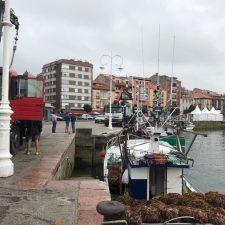 28 embarcaciones asturianas participarán en la campaña de arranque de ocle a partir del 1 de julio