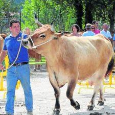 Arriondas también se queda sin sus tradicionales Fiestas de El Carmen