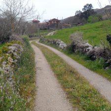 Comienza la mejora de cinco caminos en La Borbolla de Llanes con 82.000 euros de inversión