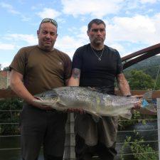 Un vecino de Camangu (Ribadesella) saca un salmón de 11,550 kg en el río Cares
