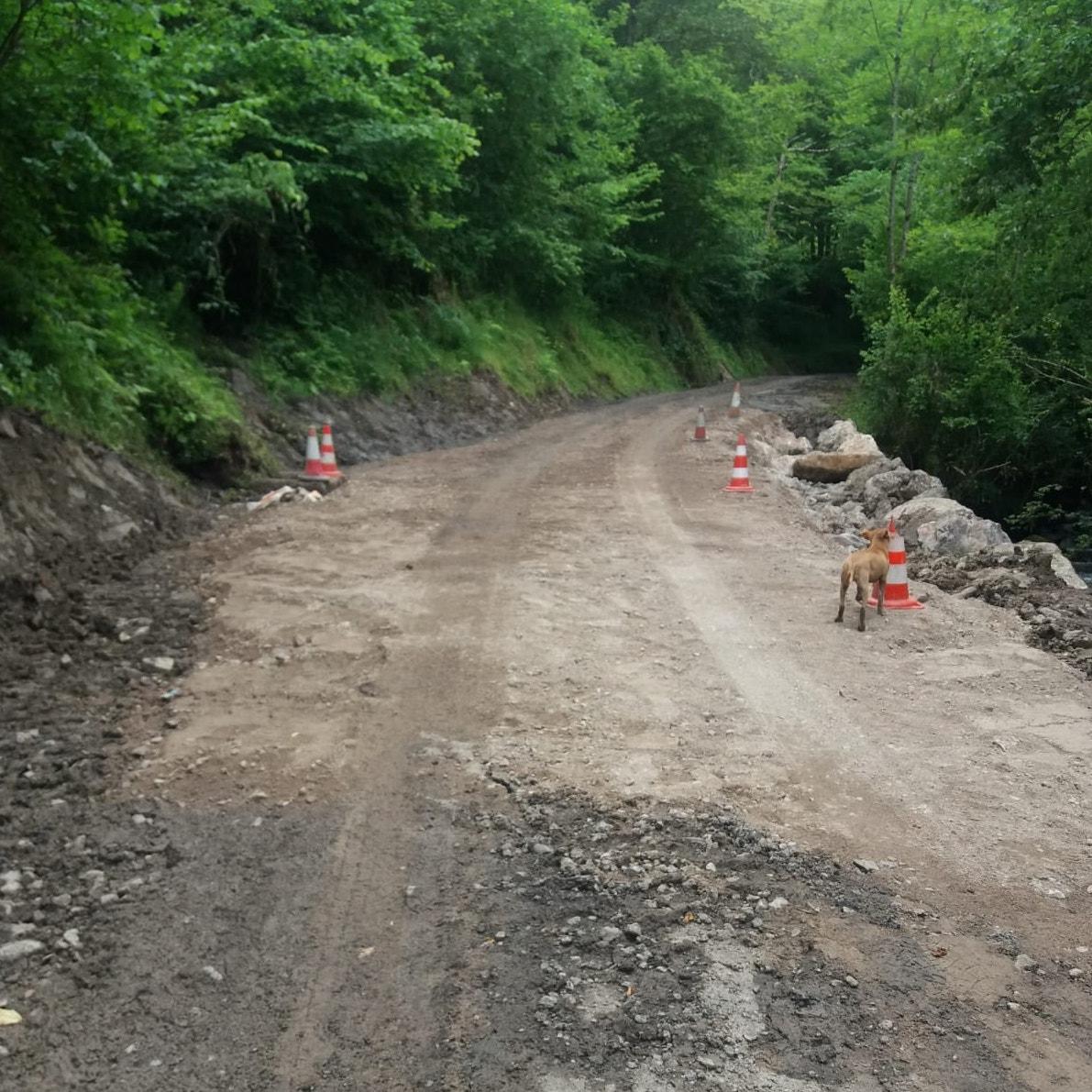 El Principado construye escolleras para mejorar el pavimento de la carretera de Viboli, en el concejo de Ponga