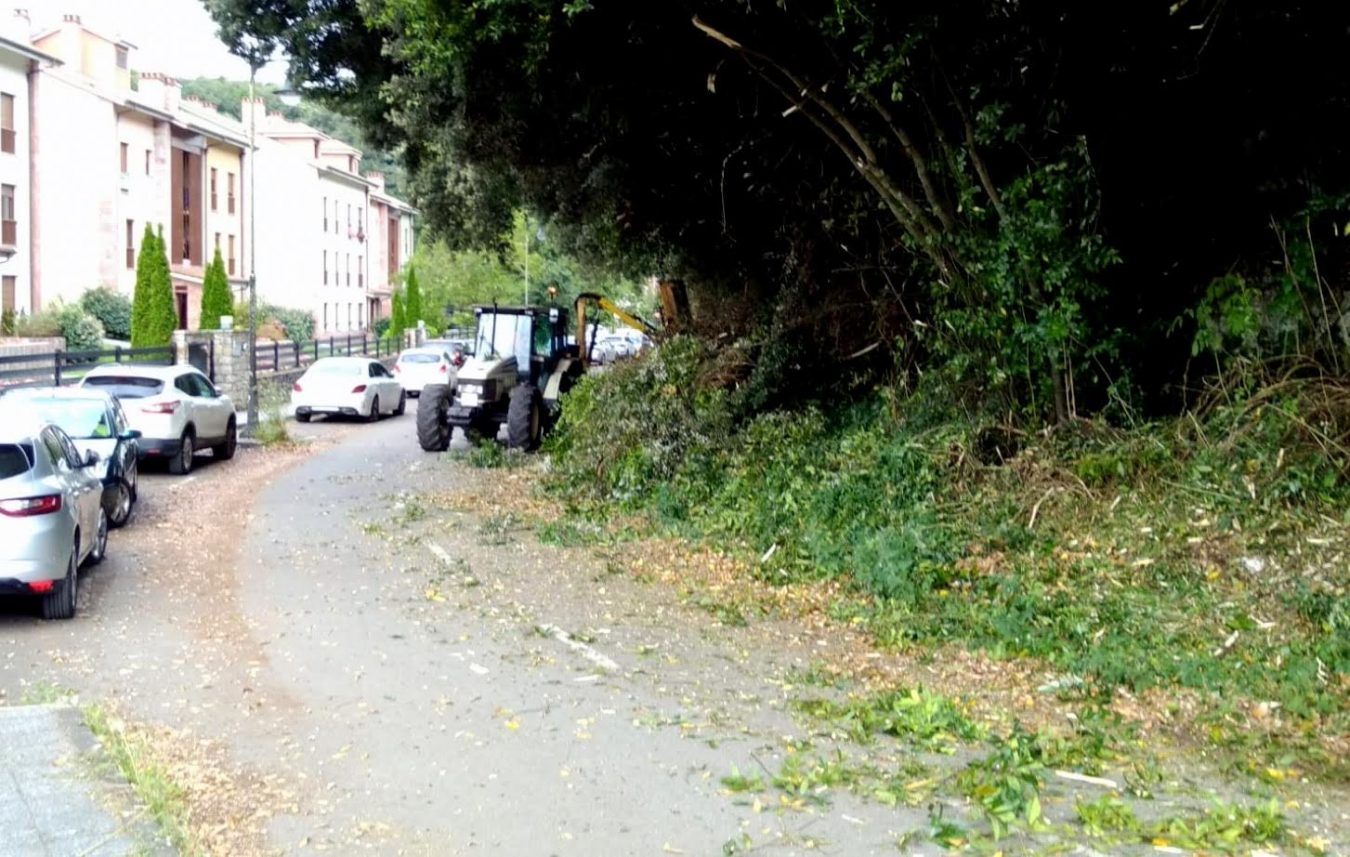 Los desbroces y limpiezas de caminos en el concejo de Llanes llegan a Barru y La Pereda