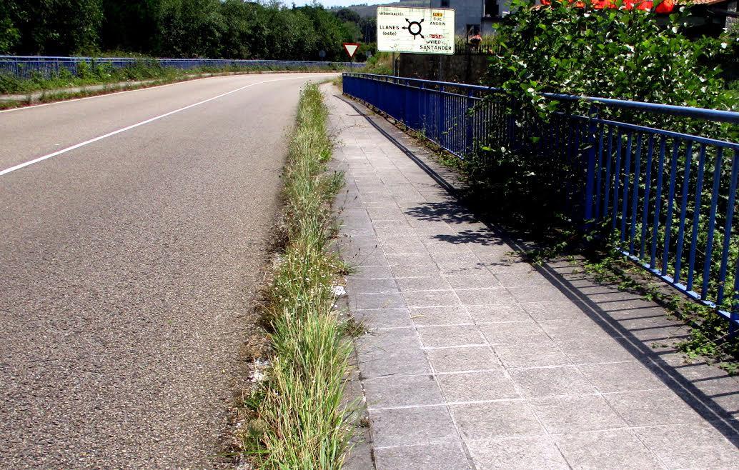 Llanes exige a Estado y Principado que limpien sus carreteras en el concejo