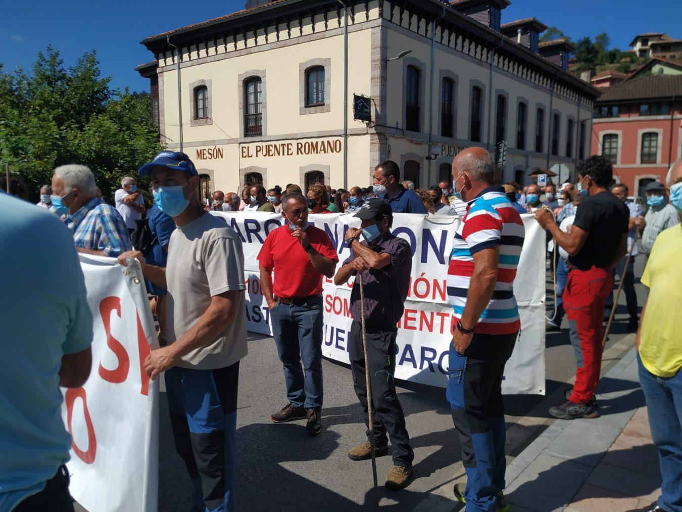 Unos 400 ganaderos de la comarca exigen en Cangas de Onís un plan del lobo mas rápido y efectivo