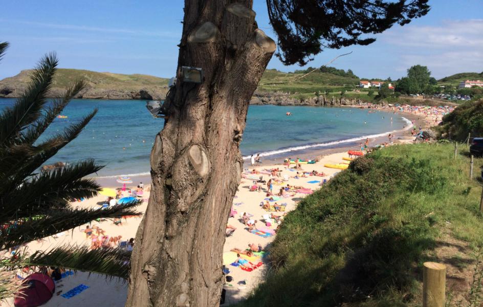 El Ayuntamiento de Llanes recuerda con señales que sus playas no permiten la presencia de perros en temporada de baños