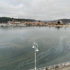 Nuevo vertido de aguas fecales y manchas oleaginosas en la ría de Ribadesella