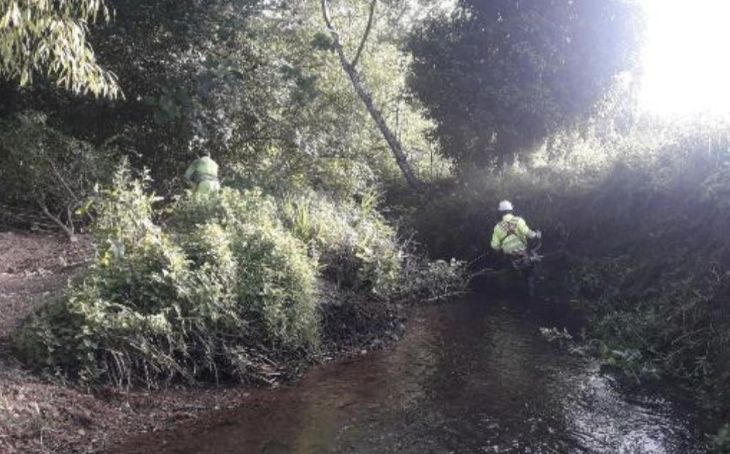 La Confederación Hidrográfica realiza trabajos de conservación y mantenimiento en dos ríos de Llanes y Onís