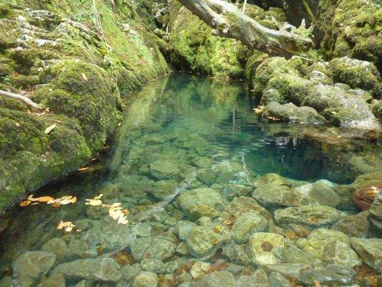 Ciudadanos Colunga pide la limpieza de los ríos Llibardón y Espasa a su paso por el concejo