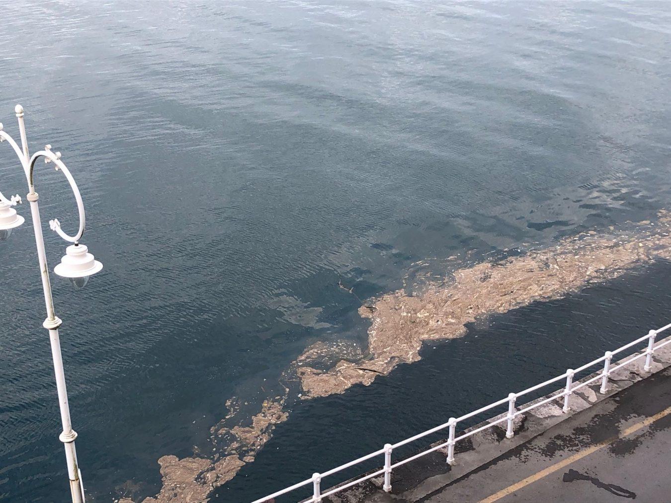 La playa de Ribadesella seguirá cerrada al baño este domingo tras el episodio contaminante de ayer